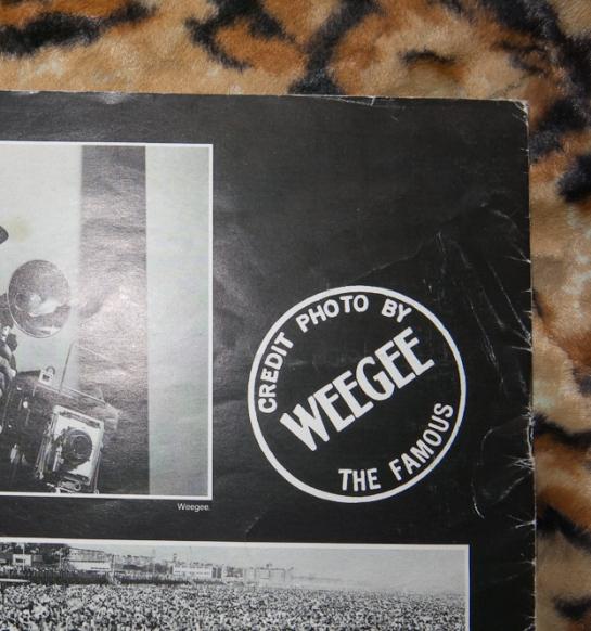 IMG_1958